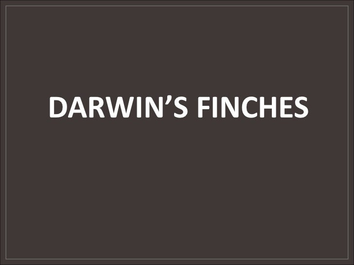 DARWIN'S FINCHES<br />