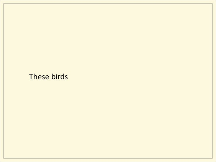 These birds<br />