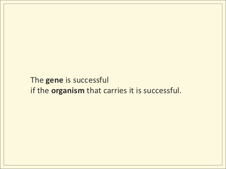 The gene is successful <br />if the organism that carries it is successful.<br />