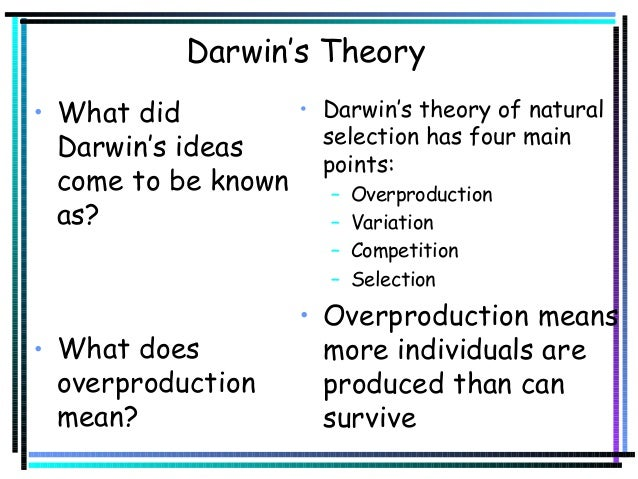 Four Main Points Of Darwin S Theory Of Natural Selection