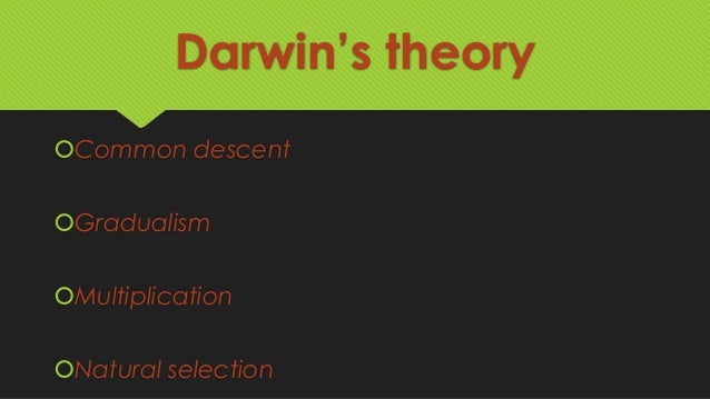 darwin s theory of evolution Charles darwin's evolutionary philosophy was fertile soil in which the atrocity of creationists have occasionally pointed out that charles darwin wasn't uniquely responsible for inventing the theory of evolution not to belittle the british scientist, but rather to encourage a better.