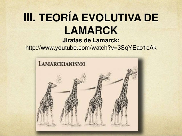 darwin v lamarck View assign 2 darwin lamarck (1) from science 3432 at csu long beach darwin and lamarck assignment: the goal of this assignment is for you to gain a clear understanding of the differences.