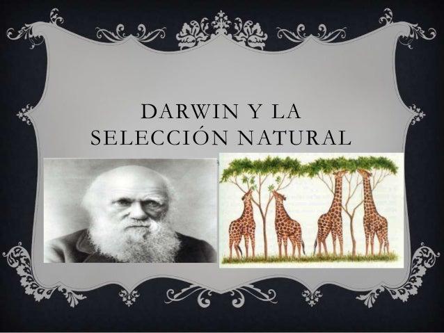DARWIN Y LASELECCIÓN NATURAL