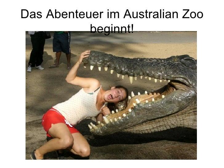 Das Abenteuer im Australian Zoo beginnt!