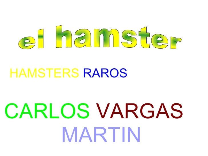 HAMSTERS  RAROS CARLOS   VARGAS   MARTIN el hamster