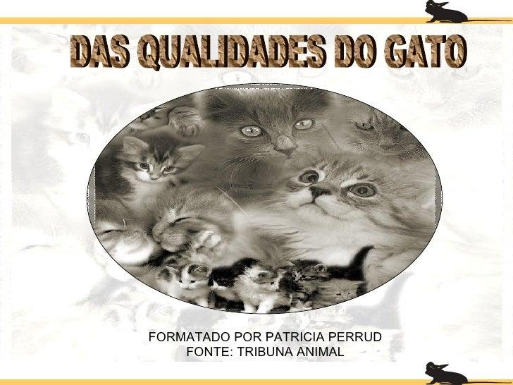 DAS QUALIDADES DO GATO FORMATADO POR PATRICIA PERRUD FONTE: TRIBUNA ANIMAL