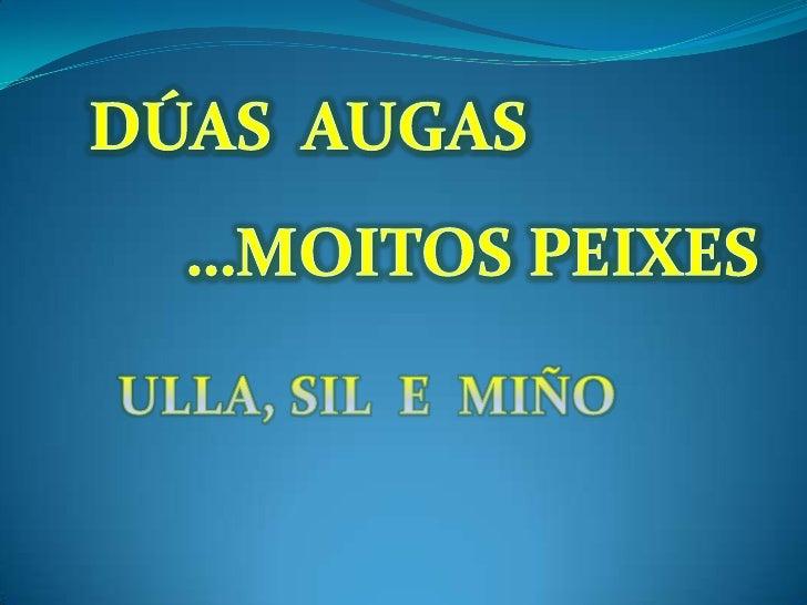 DÚAS  AUGAS<br />…MOITOS PEIXES<br />ULLA, SIL  E  MIÑO<br />