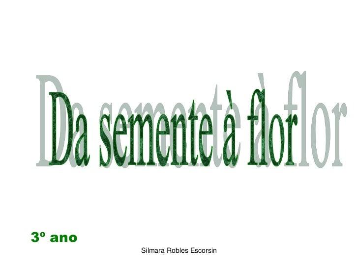 Da semente à flor<br />3º ano<br />Silmara Robles Escorsin<br />