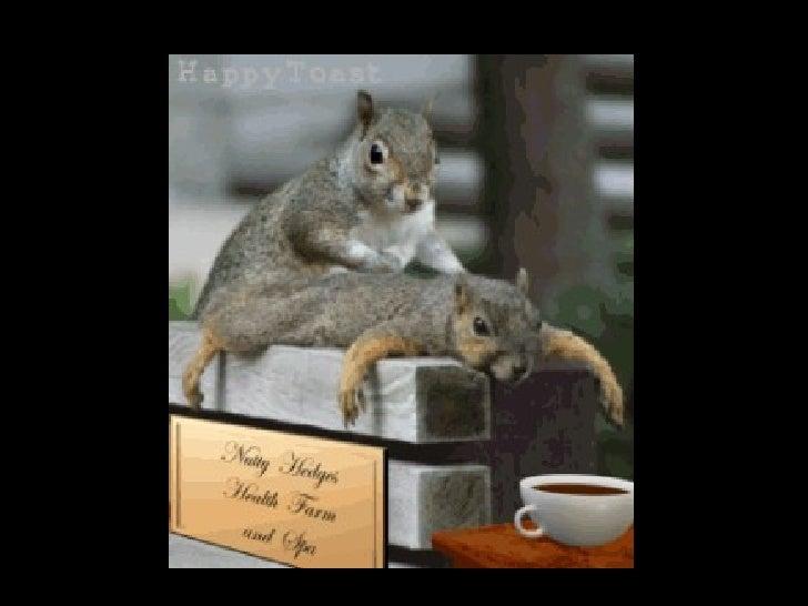 Tierliebe Slide 2