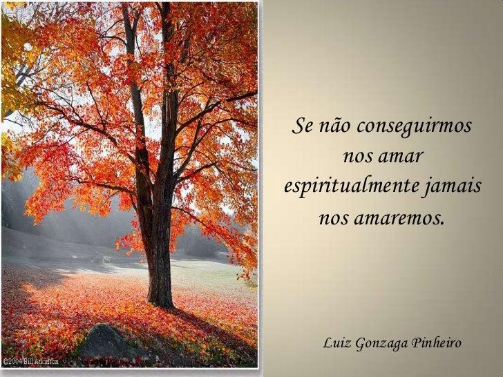Se não conseguirmos       nos amarespiritualmente jamais    nos amaremos.    Luiz Gonzaga Pinheiro