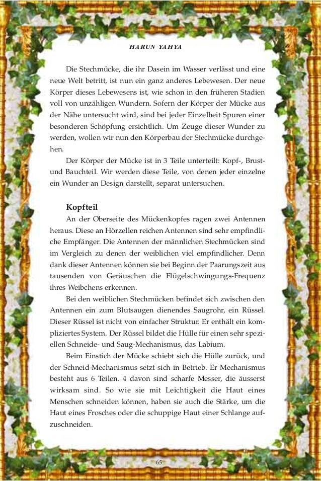 Das wunder der stechmücke. german deutsche