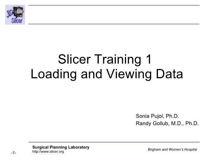 Slicer Training 1  Loading and Viewing Data Sonia Pujol, Ph.D. Randy Gollub, M.D., Ph.D.