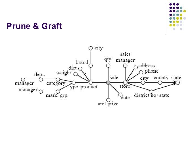 Prune & Graft