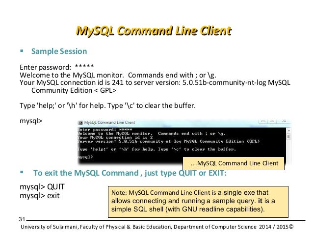 Database Application with MySQL