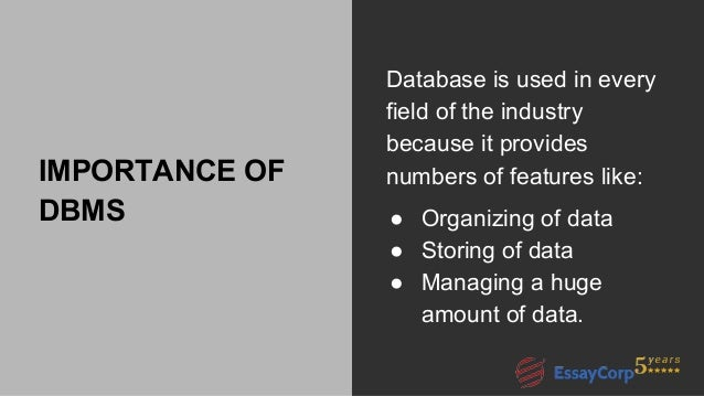 database assignment help 7 importance of dbms database