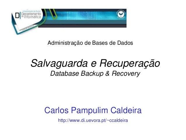 Salvaguarda e Recuperação Database Backup & Recovery Carlos Pampulim Caldeira http://www.di.uevora.pt/~ccaldeira Administr...