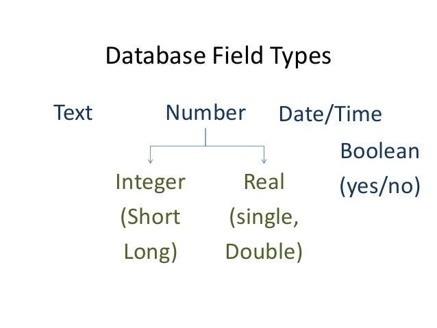 Database field types