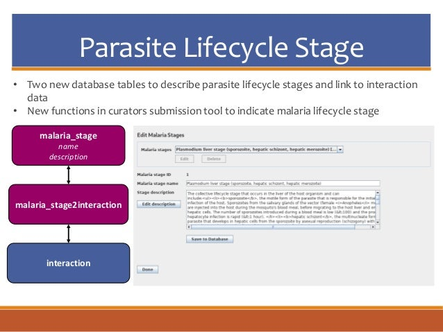 Parasite Lifecycle Stage malaria_stage name description malaria_stage2interaction interaction • Two new database tables to...