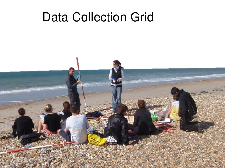 Data Collection Grid