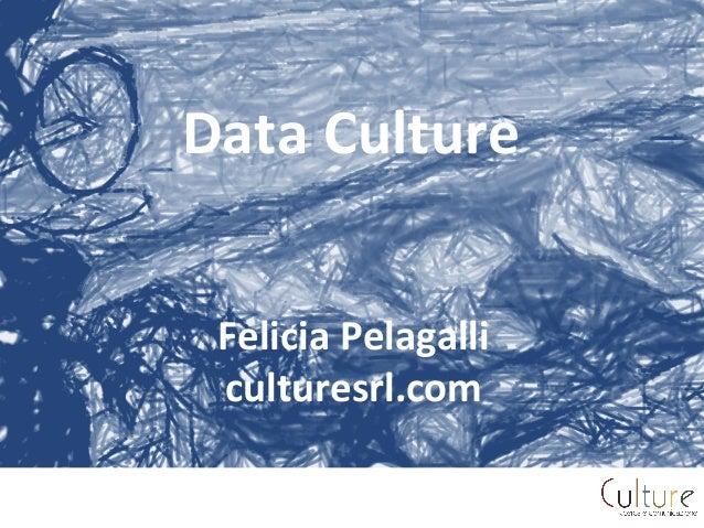 Data  Culture         Felicia  Pelagalli   culturesrl.com