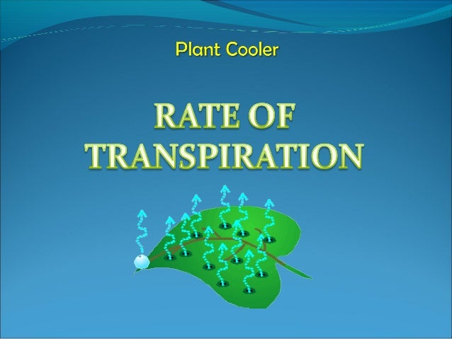 SCIENTIFIC CONCEPT Plant Cooler Transpiration is a process loss of water in the form of water vapour from part of plant e...