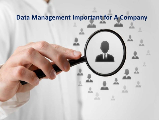 Management Important for A Company