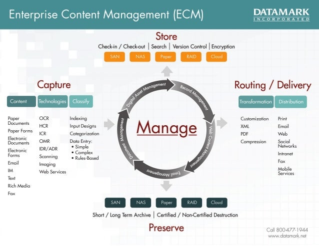 DATAMARK Enterprise Content Management Infographic