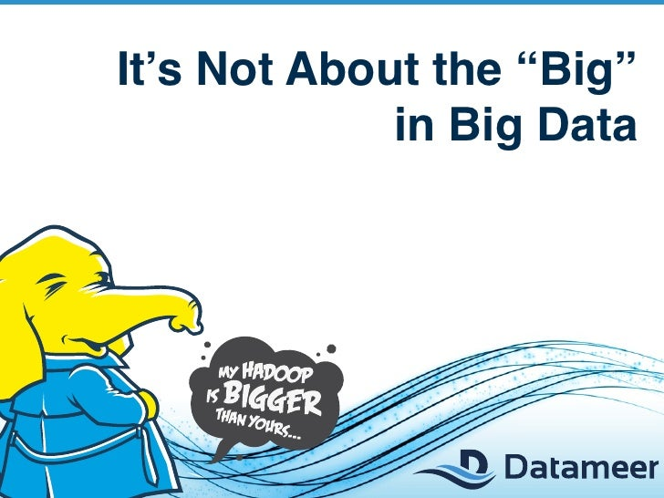 """It's Not About the """"Big""""             in Big Data"""