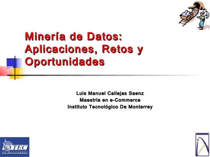 Minería de Datos:Aplicaciones, Retos yOportunidades           Luis Manuel Callejas Saenz             Maestria en e-Commerc...