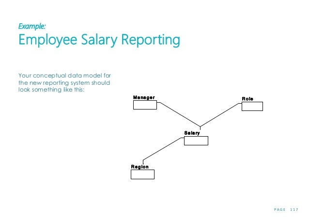 P A G E 1 1 7 Example: Employee Salary Reporting Your conceptual data model for the new reporting system should look somet...