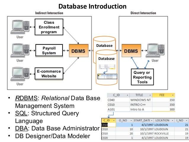 Data Model Desition Case Analysis