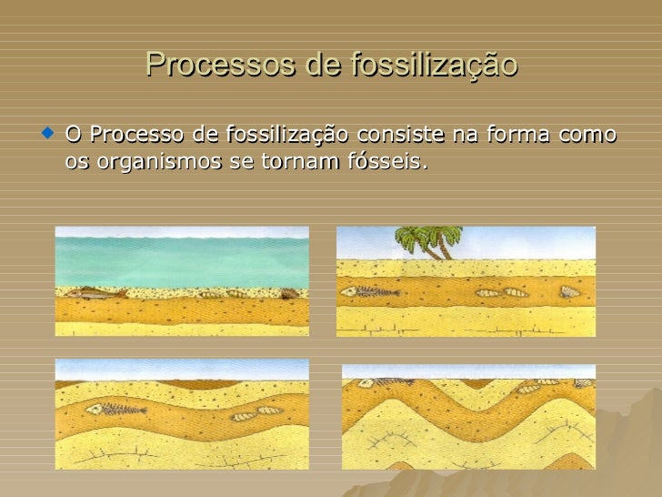 Processos de fossilização <ul><li>O Processo de fossilização consiste na forma como os organismos se tornam fósseis.  </li...
