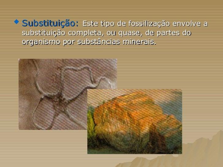 <ul><li>Substituição:   Este tipo de fossilização envolve a substituição completa, ou quase, de partes do organismo por su...