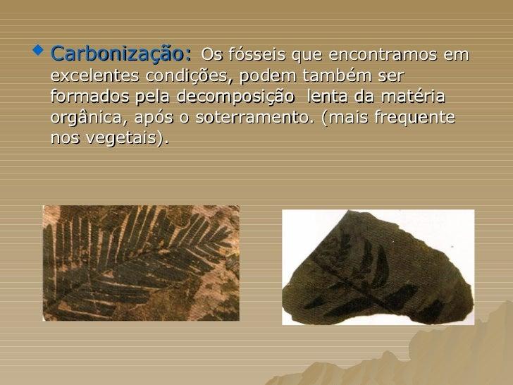 <ul><li>Carbonização:   Os fósseis que encontramos em excelentes condições, podem também ser formados pela decomposição  l...