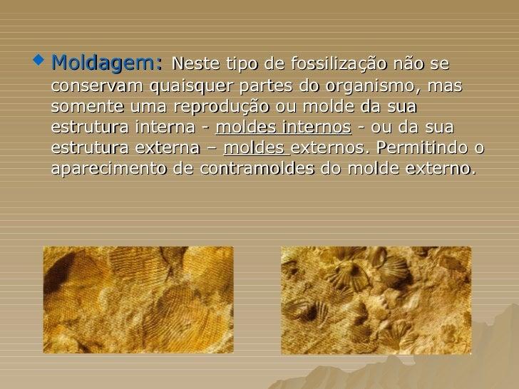 <ul><li>Moldagem:   Neste tipo de fossilização não se conservam quaisquer partes do organismo, mas somente uma reprodução ...