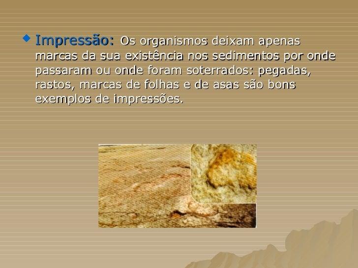 <ul><li>Impressão:   Os organismos deixam apenas marcas da sua existência nos sedimentos por onde passaram ou onde foram s...