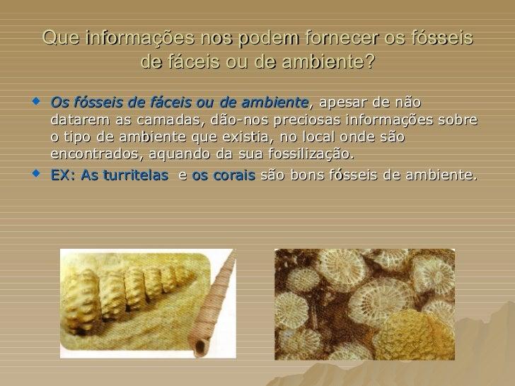 Que informações nos podem fornecer os fósseis de fáceis ou de ambiente? <ul><li>Os fósseis de fáceis ou de ambiente , apes...