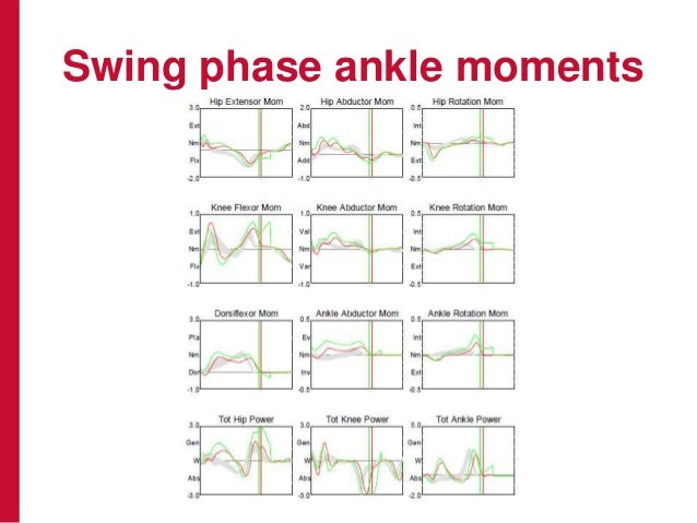 Swing phase ankle moments