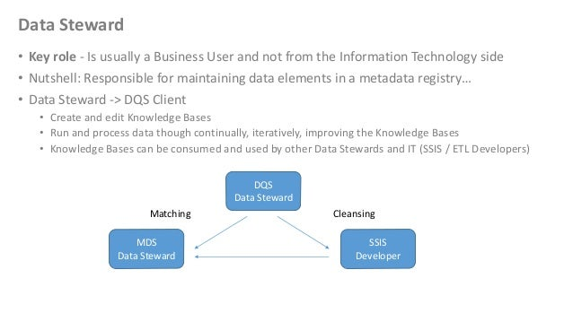 Data Steward• Key role - Is usually a Business User and not from the Information Technology side• Nutshell: Responsible fo...