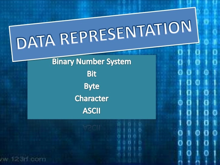 DATA REPRESENTATION<br />Binary Number System<br />Bit<br />Byte<br />Character<br />ASCII<br />