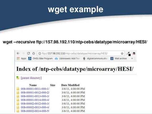 Web Scraping Basics