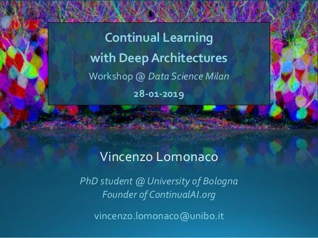 Continual Learning with Deep Architectures Workshop @ Data Science Milan 28-01-2019 Vincenzo Lomonaco vincenzo.lomonaco@un...