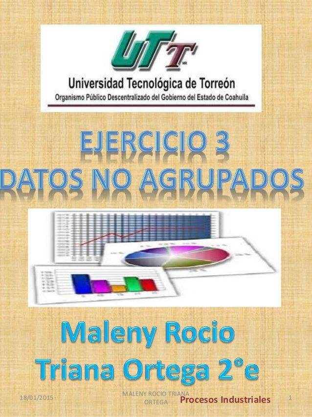 Procesos Industriales18/01/2015 MALENY ROCIO TRIANA ORTEGA 1