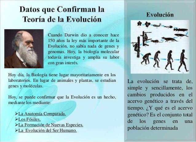 Datos que confirman la teoría de la evolución