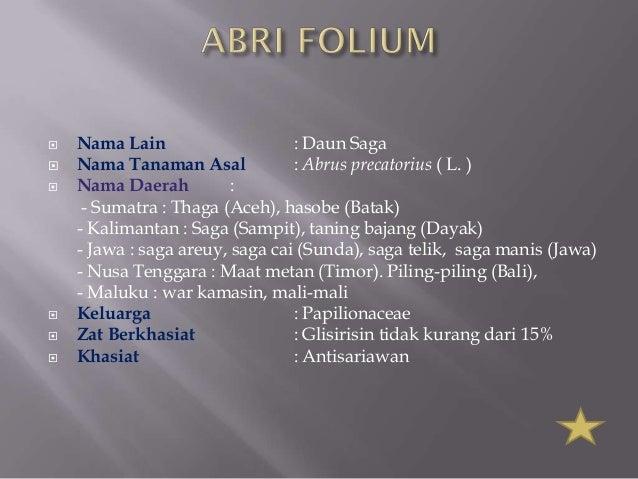 Daun pptx Slide 3