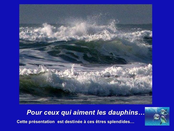 Pour ceux qui aiment les dauphins… Cette présentation  est destinée à ces êtres splendides…