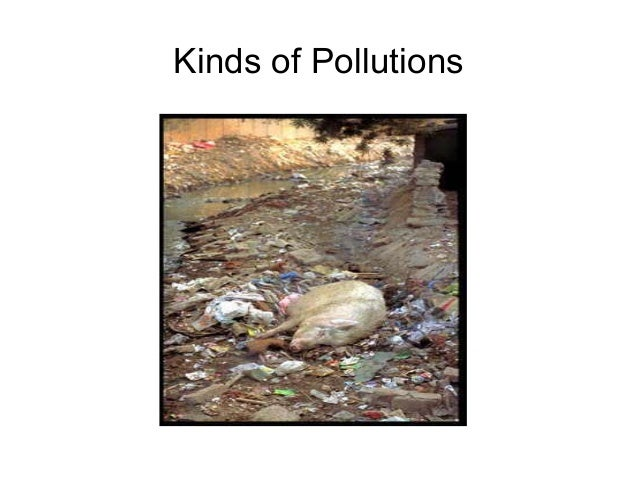 Kinds of Pollutions