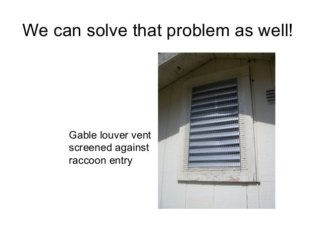 We can solve that problem as well!     Gable louver vent     screened against     raccoon entry