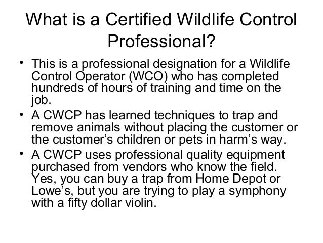 What is a Certified Wildlife Control           Professional?• This is a professional designation for a Wildlife  Control O...