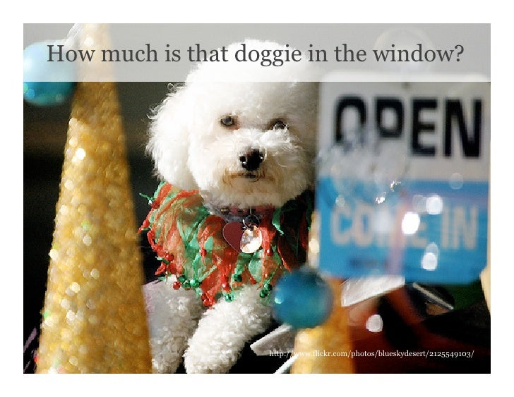 How much is that doggie in the window?                         http://www.flickr.com/photos/blueskydesert/2125549103/